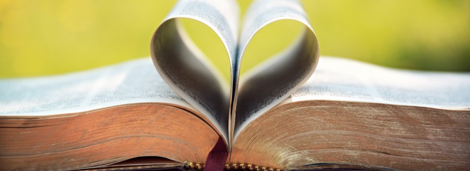 heart in pages of the bible
